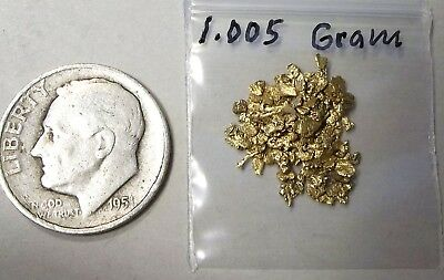 Gold Nuggets and flakes from Alaska, 1.005  Gram.