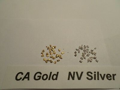 CA Placer GOLD  (0.255 Grams) & NV Silver (0.256 Grams) 20 Mesh Pickers.