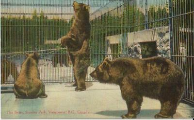 The Bears Stanley Park British Columbia BC - Unposted - Good