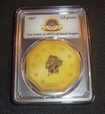 1857 S.S. Central America Ship of Gold Gold Pinch Octagon - 2018 Sunken Treasure