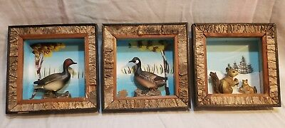 3 Vintage Enesco Wood Framed 3D Duck Squirrel Wall Plaques Hand Crafted Painted