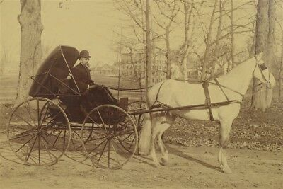 Lovely Large Antique Sepia Photograph Horse Drawn Runabout Convertible w/ Driver