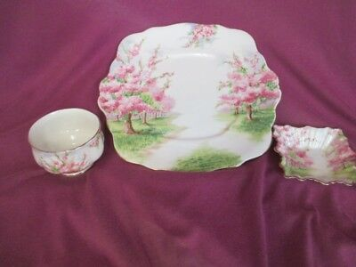 H6 Royal Albert Blossom Time Cookie Plate Miniature Open Sugar Sweet Meat Square