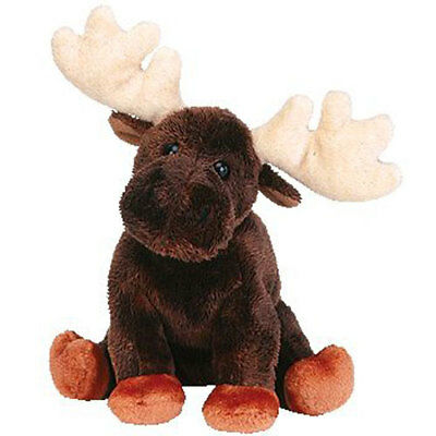 TY Beanie Baby - ZEUS the Moose (6.5 inch) - MWMTs Stuffed Animal Toy