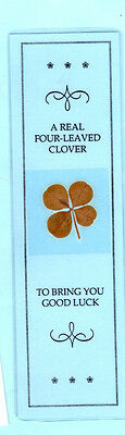 Four Leaved Clover Pressed Dried Flower Floral Blue Luck Bookmark Souvenir Gifts