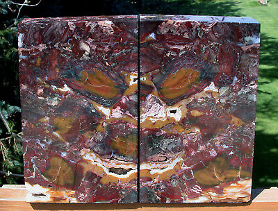 SiS: GORGEOUS RED GREEN GOLD & CRYSTAL 20 lb.  Marston Ranch Jasper Bookends!!