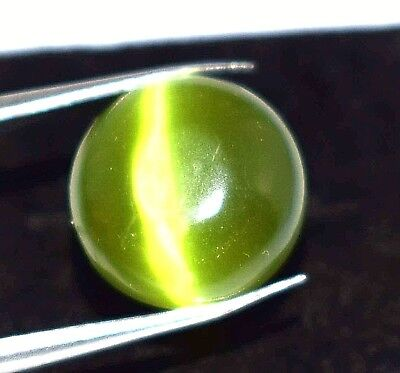 6.20 Ct NATURALGREEN CATS EYE CABOCHON ROUND CUT GEMS AFRICA IGL CERTIFIED