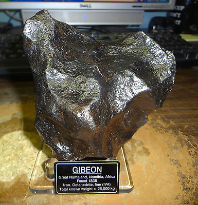 Beautiful Huge 2490 Gm Gibeon Museum Grade Meteorite From Namibia ; 5.5+ Pounds