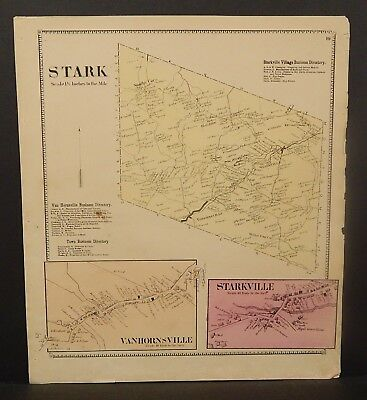 New York Herkimer County Stark Township 1868   Y16#99