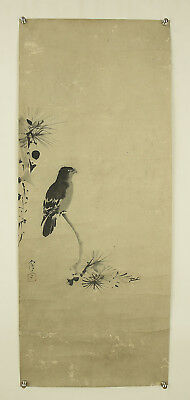 "JAPANESE MAKURI,HONSHI : KANO NAONOBU ""Bird and Flower""  @s493"