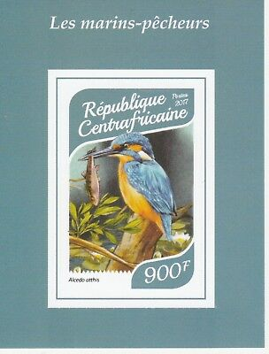 CAR 7513 - 2017  BIRDS -  KINGFISHERS imperf deluxe sheet unmounted mint