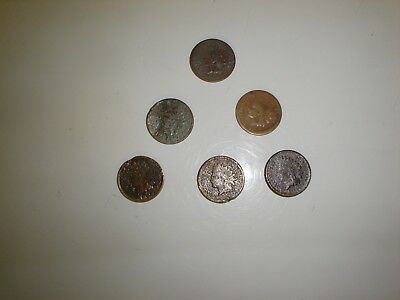 Lot of Indian Head Pennies