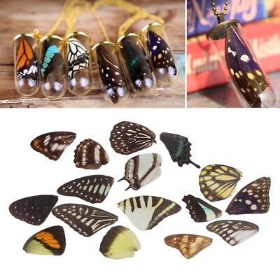 3PCS Real Butterfly Wings Resin Jewelry DIY Findings Necklaces Earrings Making