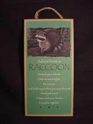 ADVICE FROM A RACCOON Wood wooden INSPIRATIONAL SIGN wall NOVELTY PLAQUE animal
