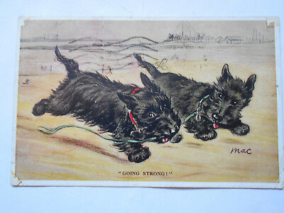 Mac Lucy Dawson Tailwagger Postcard Sweet Dark Coated Cairn Terrier Dogs 1935