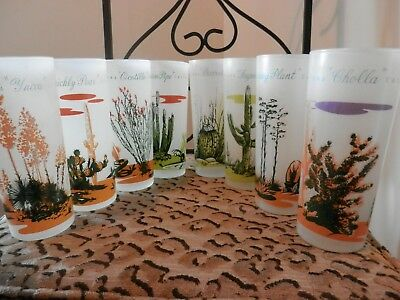 Set of 8 SOUTHWEST BLAKELY CACTUS Frosted ARIZONA GLASSES Gas Give Away 1950s