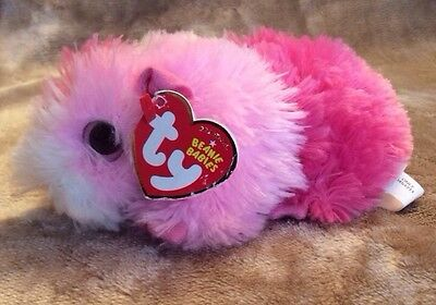 Ty Pinky Guinea Pig Hamster Pink White Plush 2012 Toy Original Beanie Babies 6