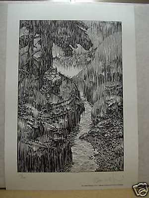 Bernie Wrightson: Frankenstein in Rain (signed & numbered) (USA)
