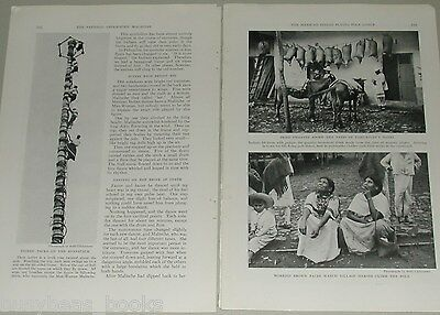 1937 magazine article Native Mexican Flying Pole Dance, Otomi, MEXICO