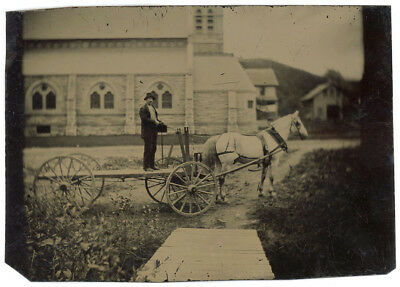Horse & Buggy & Wagon Tintype Collection 13 Tintypes