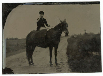 Horse & Rider Tintype Photo Collection 8 Tintypes