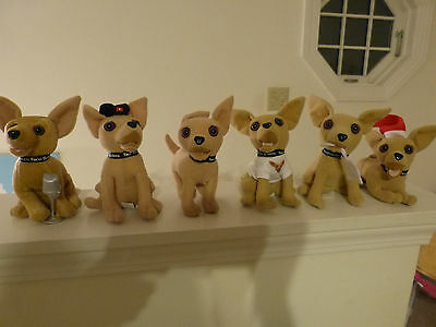 6 Taco Bell Talking Chihuahua  Dogs