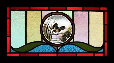 Stunning Rare Painted English Lakeland Bird Antique Stained Glass Window