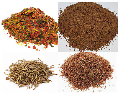 Premium Fish Food, Tropical flakes, Dried Mealworms, Dried Bloodworms, Granules
