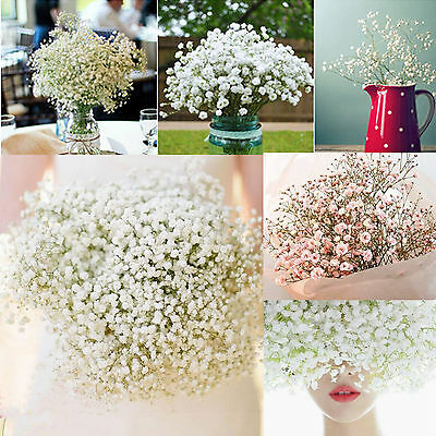 10Pcs Romantic Baby's Breath Gypsophila Silk Flower Party Wedding Home Decor LP