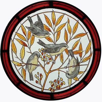 Rare Beautiful Painted Birds In Foliage Victorian Stained Glass English Roundel