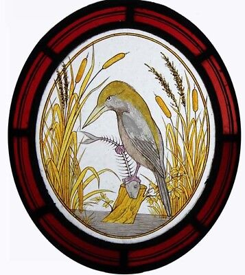 Rare Beautiful Painted Bird Heron Victorian Stained Glass English Oval Roundel