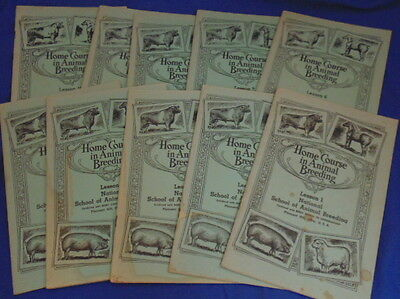 Home Course in Animal Breeding - CC Palmer - 10 Vols - Beery School Horsemanship