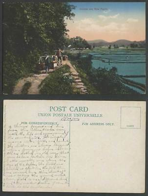 China 1923 Old Colour Postcard Native Chinese Coolies & Rice Fields Paddy Canton