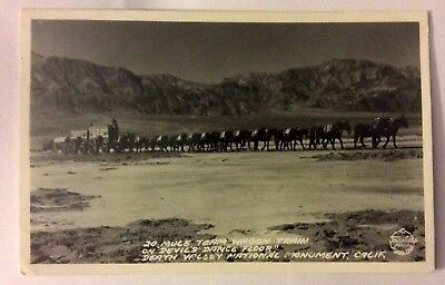 20 MULE TEAM AND WAGON DEATH VALLEY CALIF  REAL PHOTO POSTCARD1900s#1075