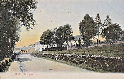1905 BLAIRGOWRIE - Marlee, houses, man by side of road, walls, trees, grass