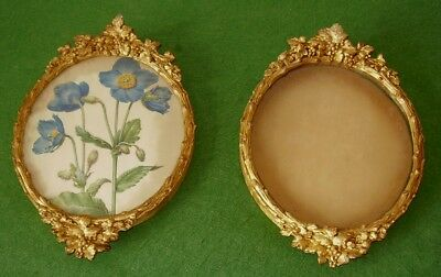 ANTIQUE GILT FRAMES PAIR OF OVAL FLOWER SWAG DECORATION STUNNING circa 1850