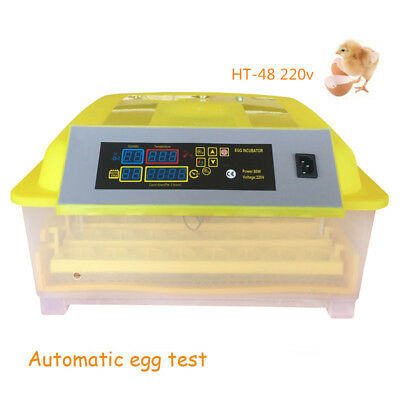 Full Automatic 48 Eggs Turning Incubator Smart PID Control For Chicken ,Ducks