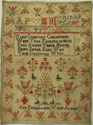 Early 19Th Century Motif & Verse Sampler By Ann Phillips Aged 7 - 1835