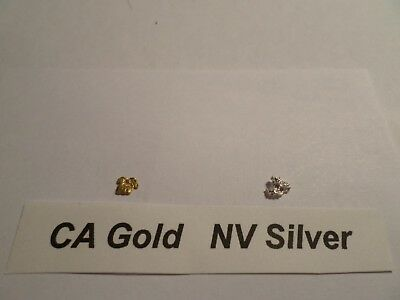 CA GOLD Placer (0.071 Grams) NV SILVER (0.124 Grams) 12 mesh Nuggets/Pickers.