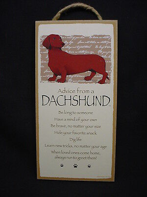 ADVICE FROM A DACHSHUND dog WISDOM puppy SIGN wood WALL PLAQUE Doxie USA MADE