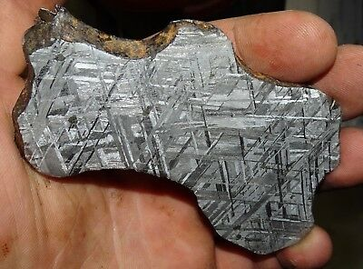 Beautiful Large 139 Gm Etched Gibeon Meteorite Slice From Namibia