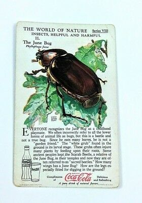 1930 Coca Cola~The World of Nature~Insects Helpful,Harmful~#11 June Bug~Series 8