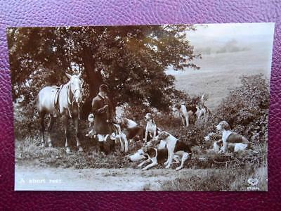Hunting Huntsman Horse Fox Hounds *Vintage* RP c1910 A Short Rest
