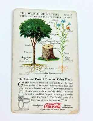 1930 Coca Cola~The World of Nature~#1 Essential Parts of Trees, Plants~Series 3