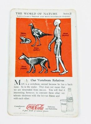 1930 Coca Cola~The World of Nature~#1 Our Vertebrate Relatives~Series 2~Friends