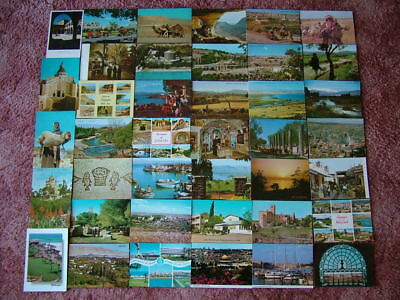 40 Unused Postcards of THE MIDDLE EAST / THE HOLY LAND.