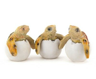 Baby Sea Turtle Egg Faux Hatchlings Set of 3 Multi Color  New