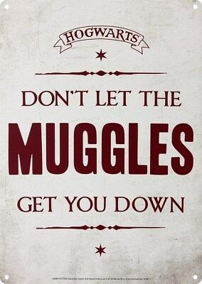 Blechschild Harry Potter Don't Let The Muggles Get You Down 15 x 21 cm