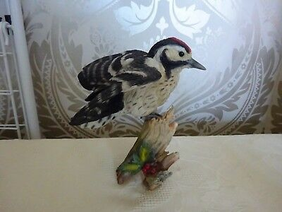 Country Artists Bird Figurine Lesser Spotted Woodpecker 03416