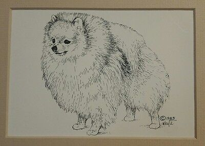 ~1983 Pencil Art Pomeranian Dog Art Matted~ Signed Whyte~